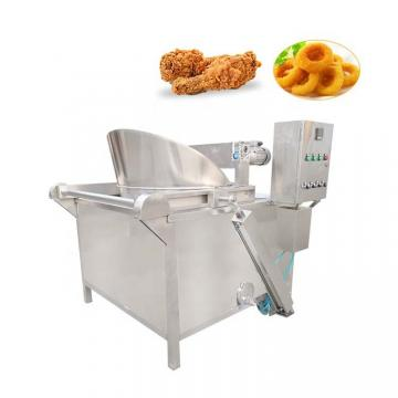 Top Stainless Steel Electric Fryer Food Machine with Ce (WF-162V)